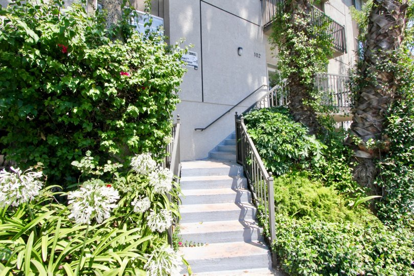 Beautiful Manhattan Villas, surrounded by greenery, at Hancocok park
