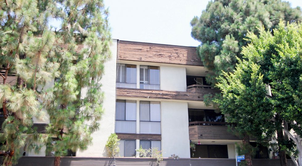 A sunny day in the Wilshire Galleria with beautiful house and a big tree infrond of the house.