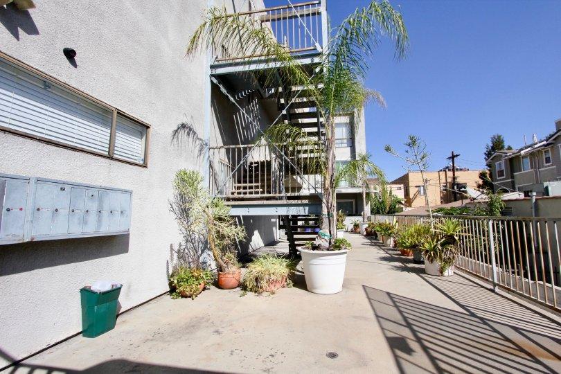 The potted plants around La Mirada Condominiums