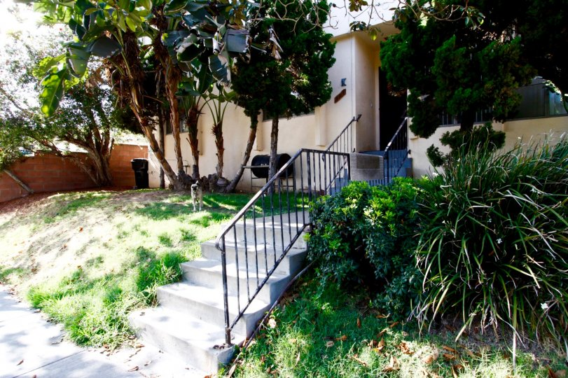 The stairs to the entrance of 317 W Hyde Park Blvd