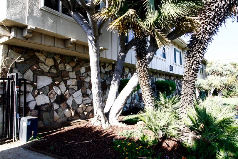 The landscaping at Care Free Place in Inglewood