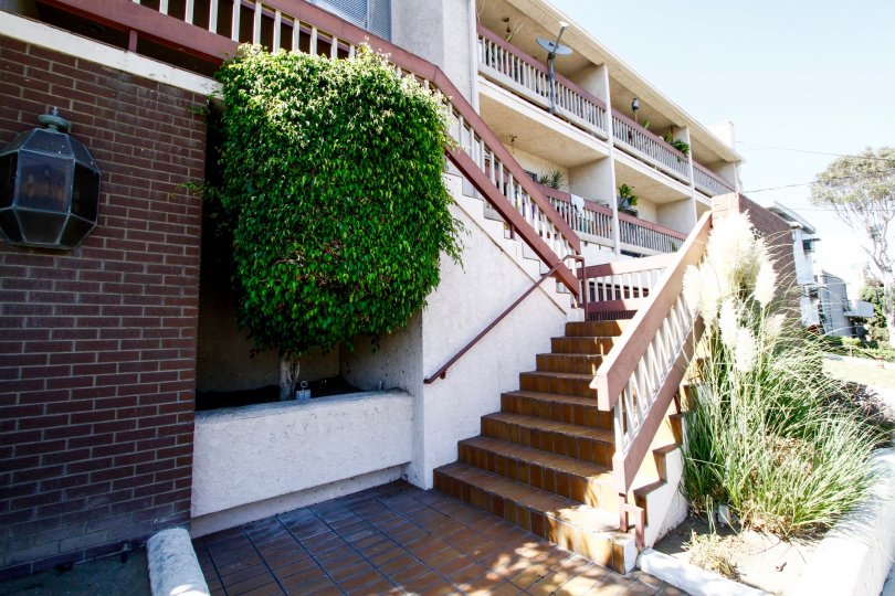 The stairs leading up to Evergreen Townhomes