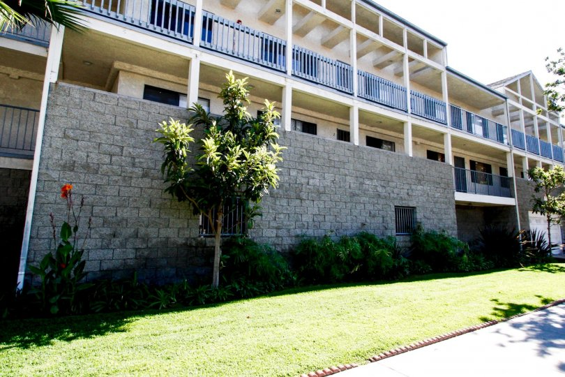 The sidewalk in front of the Grevillea Townhomes
