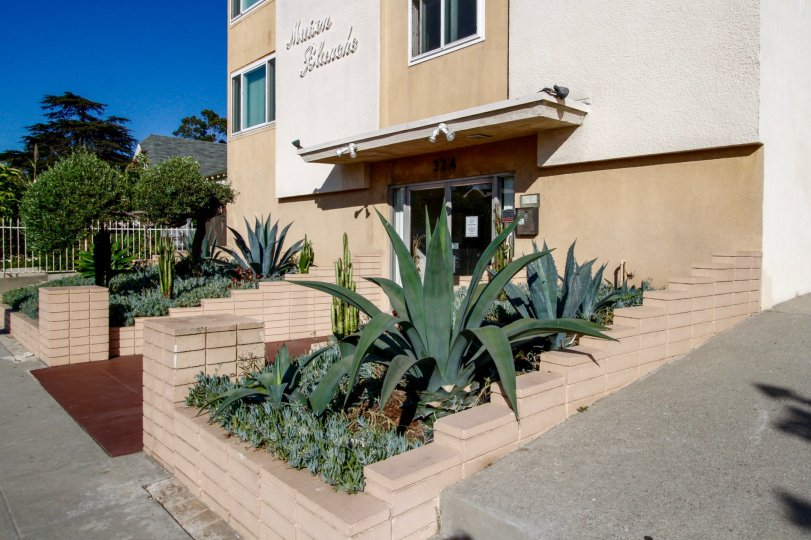 The landscaping at Maison Blanche in Inglewood