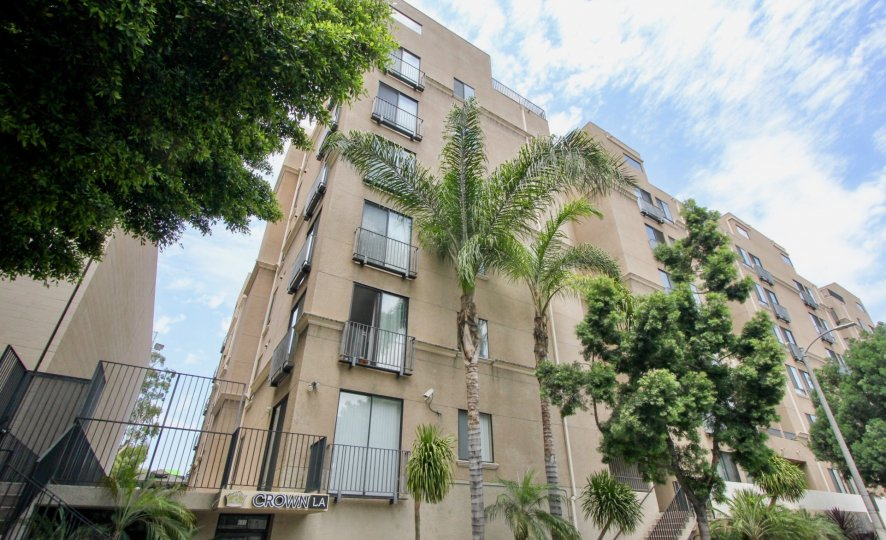 Brown walls, Clear Skies and Green trees around the Barcelona Tower, Koreatown, California