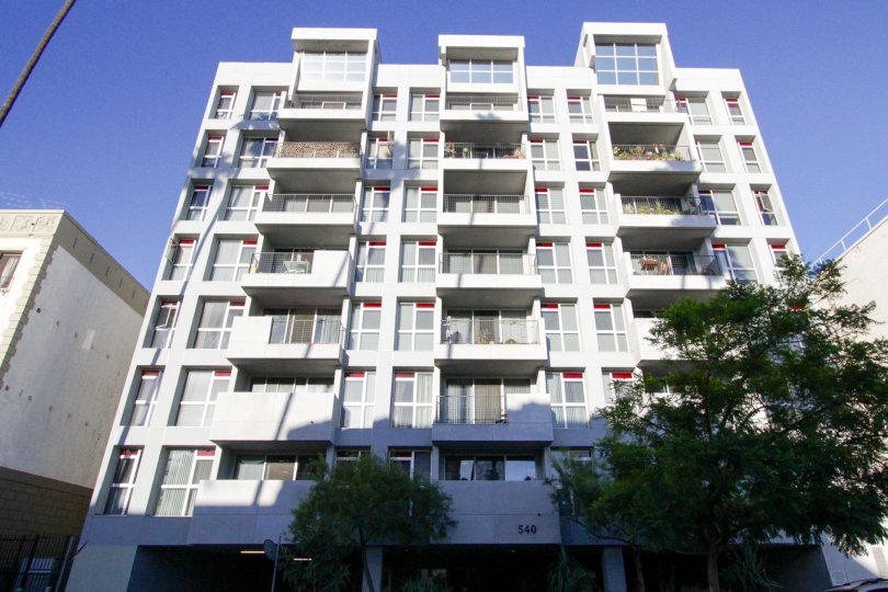Kenmore Tower consists of 8 floors with the top floor offer raised ceilings and larger windows