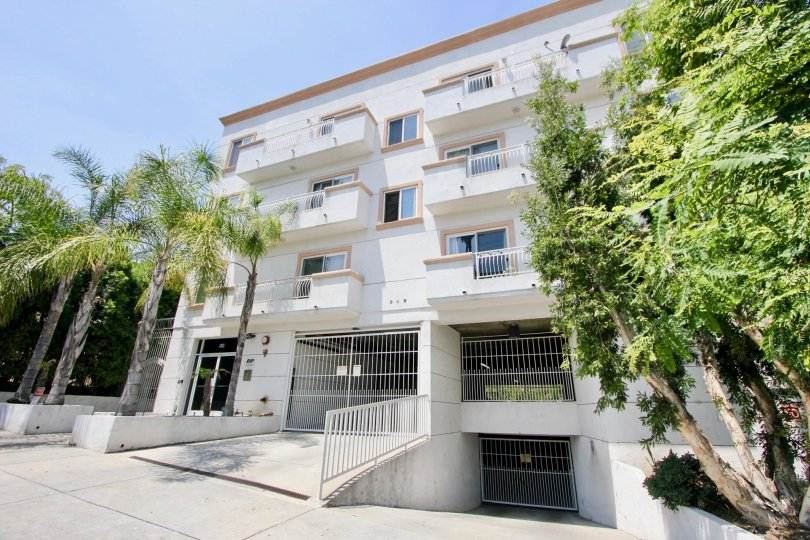 3-storey building with white walls and bars, with four palm trees adorning the entrance to the residence