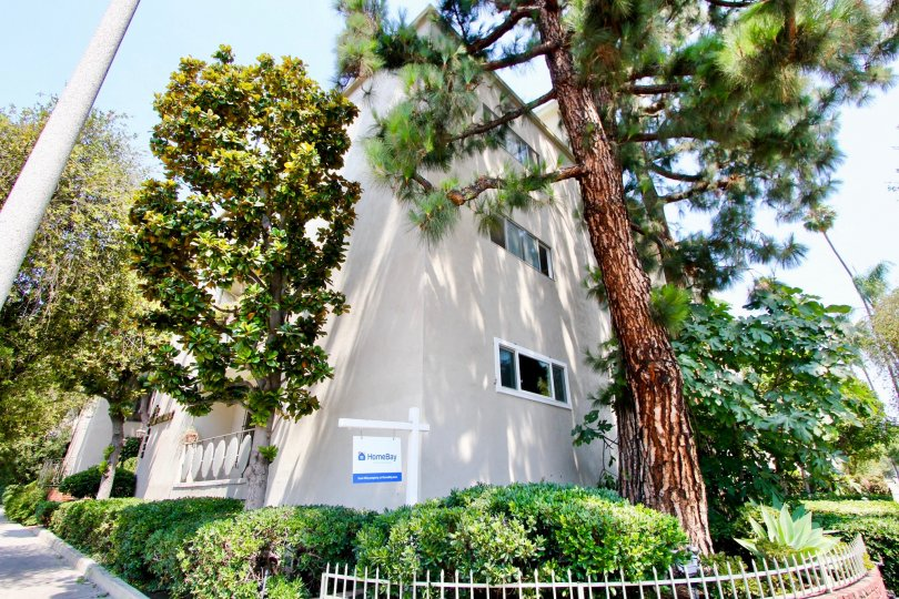 A sunny day at an apartment complex in The Fairmount, Koreatown, California with beautiful trees and foliage.