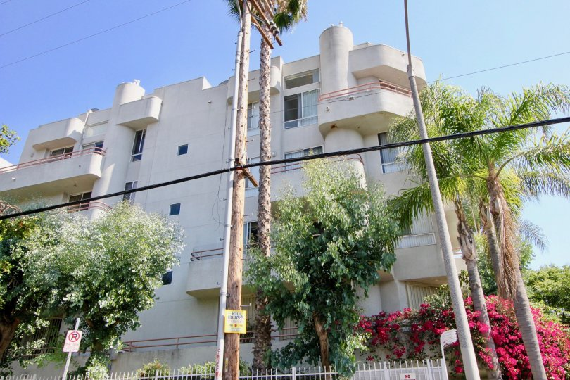 The Wellington Grande Apartment Rentals (Koreatown) in Los Angeles California