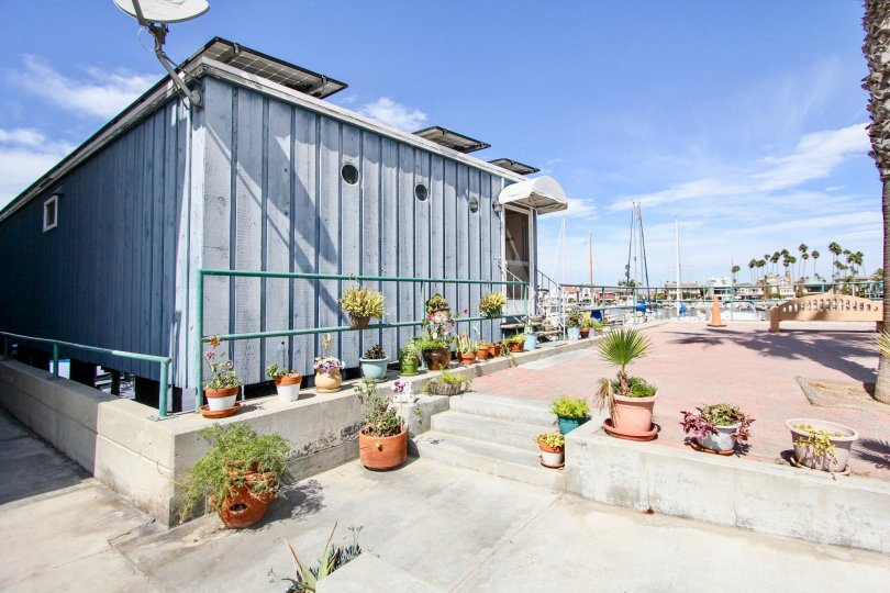 The potted plants seen around the Bay Yacht Club