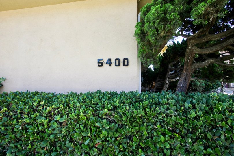 The address for Park View on the building