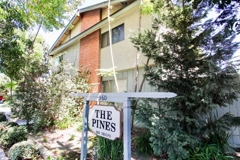 The address for The Pines