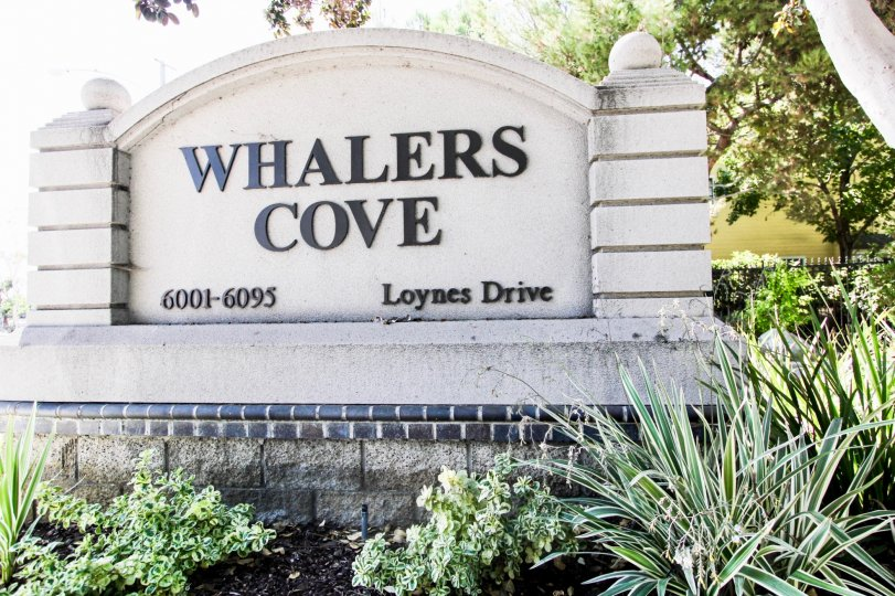 The Whalers Cove name on the sign