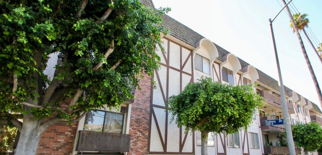 The trees around Los Feliz Condominiums