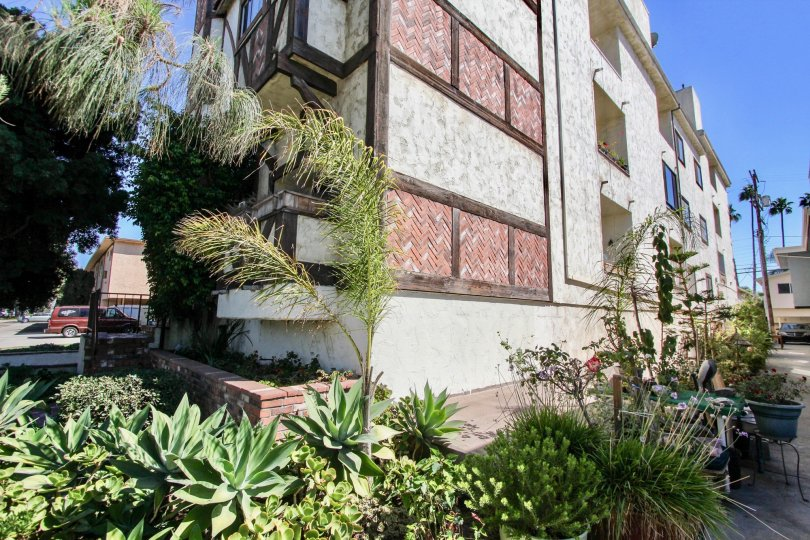 The landscaping around the Venice Chateau in Mar Vista, California