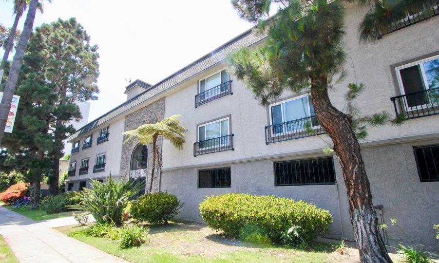Amazing exteriors of Casa Del Rey with its greeneries, Marina Del Rey, California