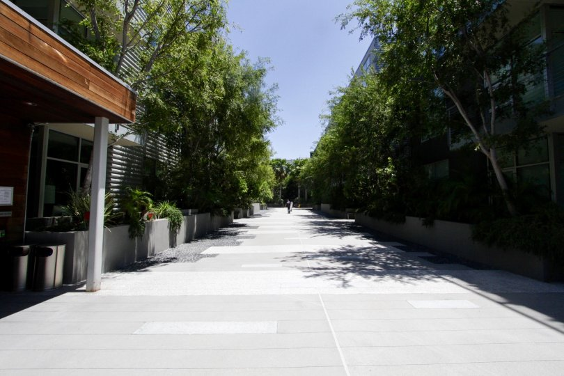 The driveway into the Gallery Lofts