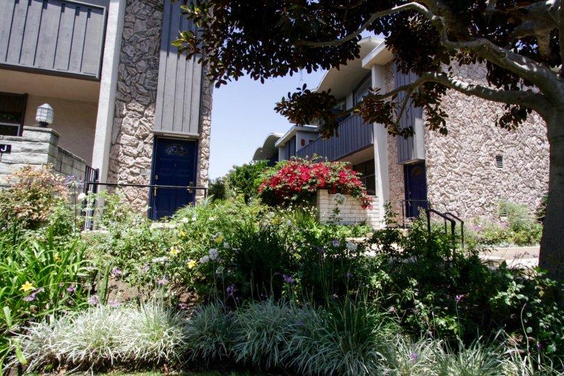 The landscaping around Villa Cavalaire