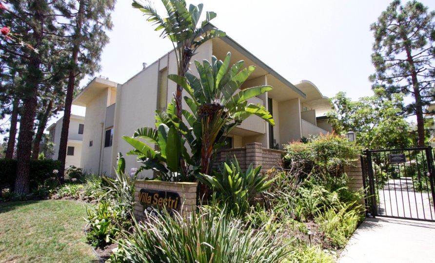 The landscaping at Villa Sestri in Marina Del Rey