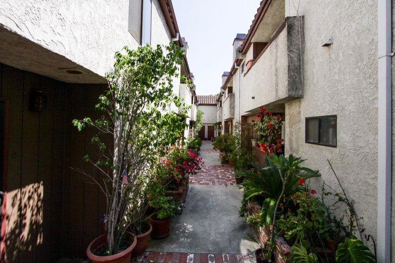 The breezeway at 11154 Huston St in North Hollywood