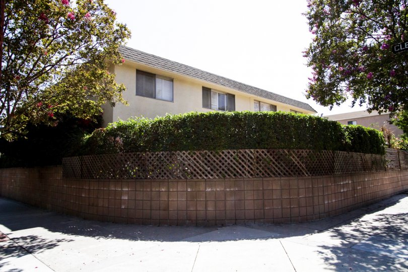 The landscaping seen around 4881 Cleon Ave in North Hollywood