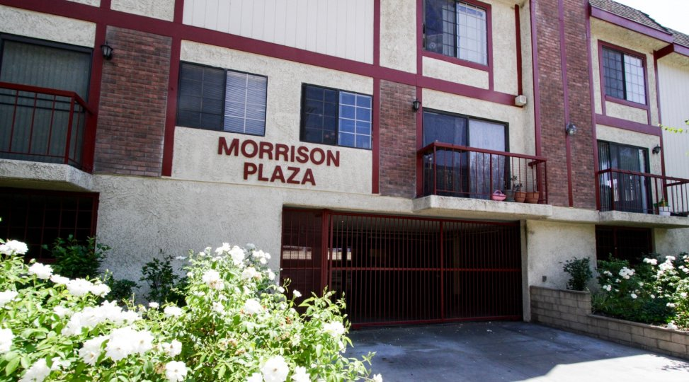 Parking for the Morrision Plaza