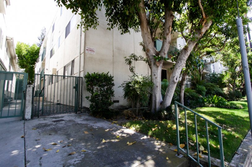 The walkway around Toluca Villa