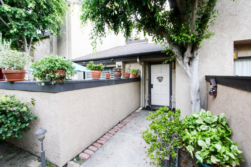 The sidewalk up to a unit at 1484 Corson St in Pasadena, California