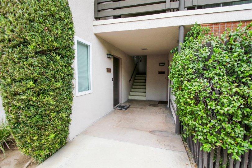 The sidewalk through 355 S Euclid Ave in Pasadena, California