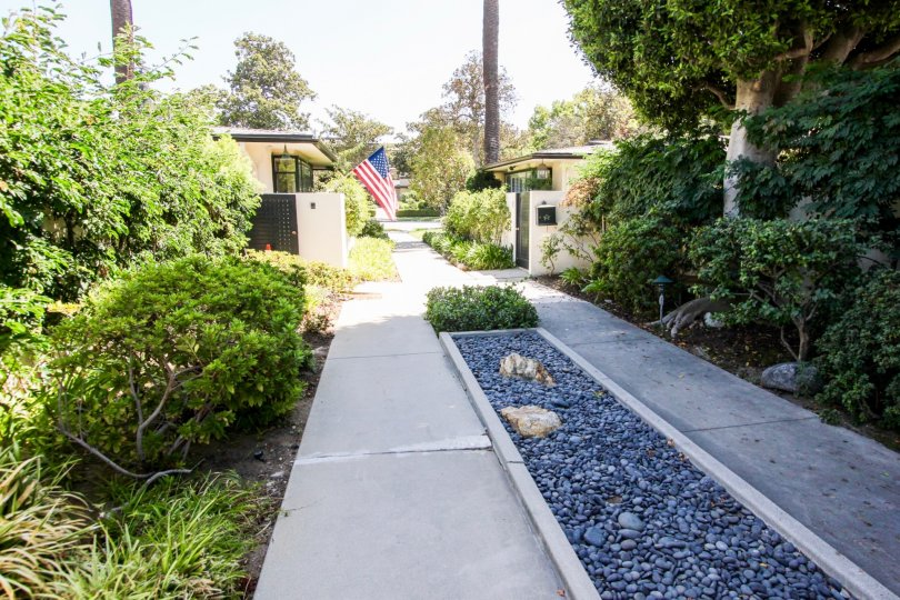 The landscaping around 481 S Orange Grove Blvd in Pasadena, California