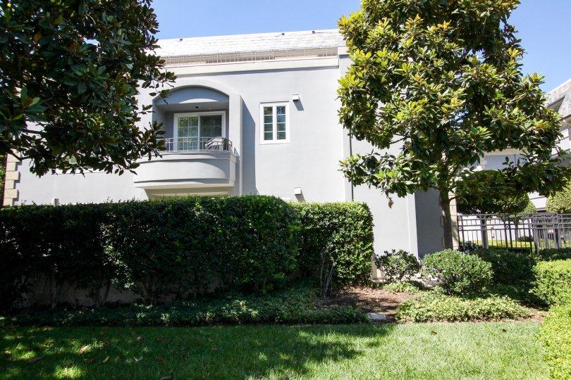 The yard in front of 515 S Orange Grove Blvd in Pasadena, California