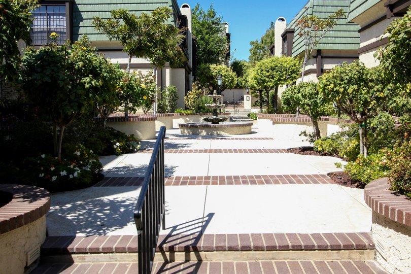 The landscaping around 885 S Orange Grove Blvd