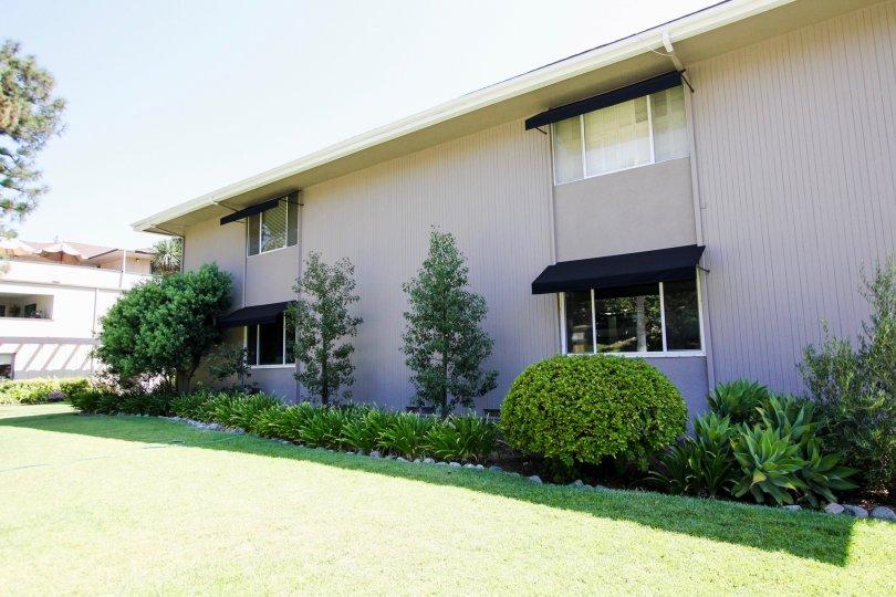 The windows in the building at 900 S Orange Grove Blvd in Pasadena, California