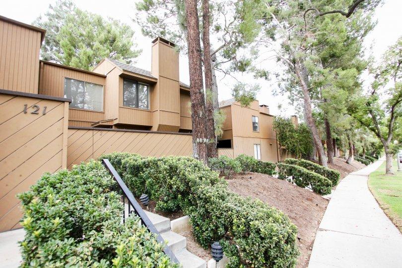 The landscaping around Arlington Complex in Pasadena, California