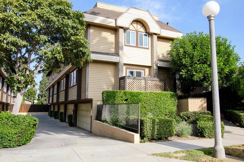 The hedges around Greenwood Village in Pasadena, California