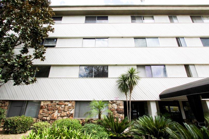 The landscaping aroun Los Robles Condominiums