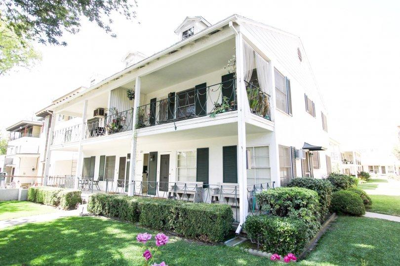 The hedges around Monticello Manor in Pasadena, California