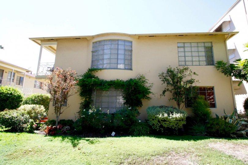 The windows seen in Park Lane in Pasadena, California