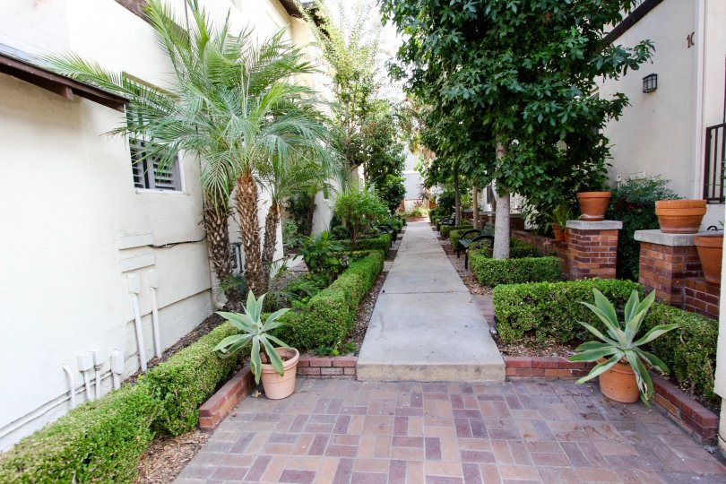 The sidewalk through Tivoli Villas in Pasadena, California