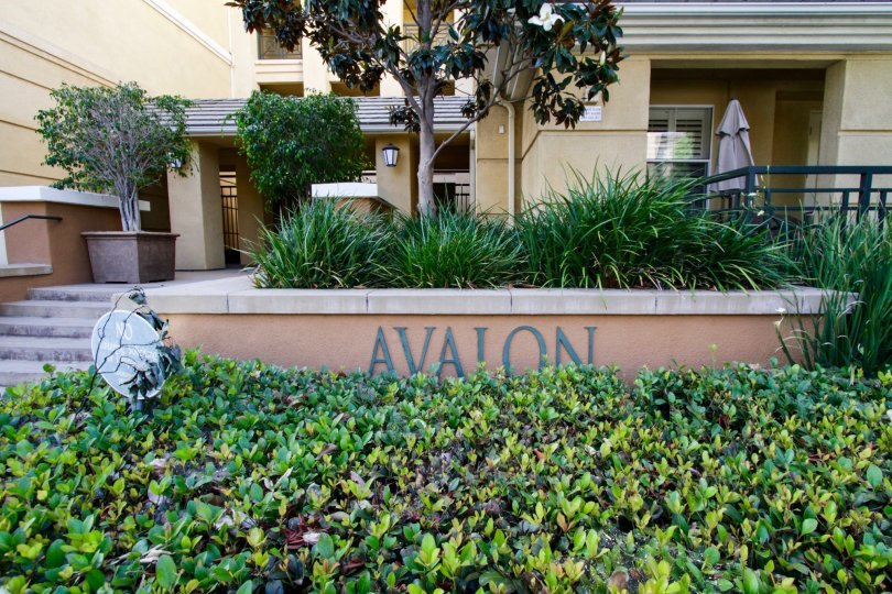 The welcome announcement into Avalon Playa Vista