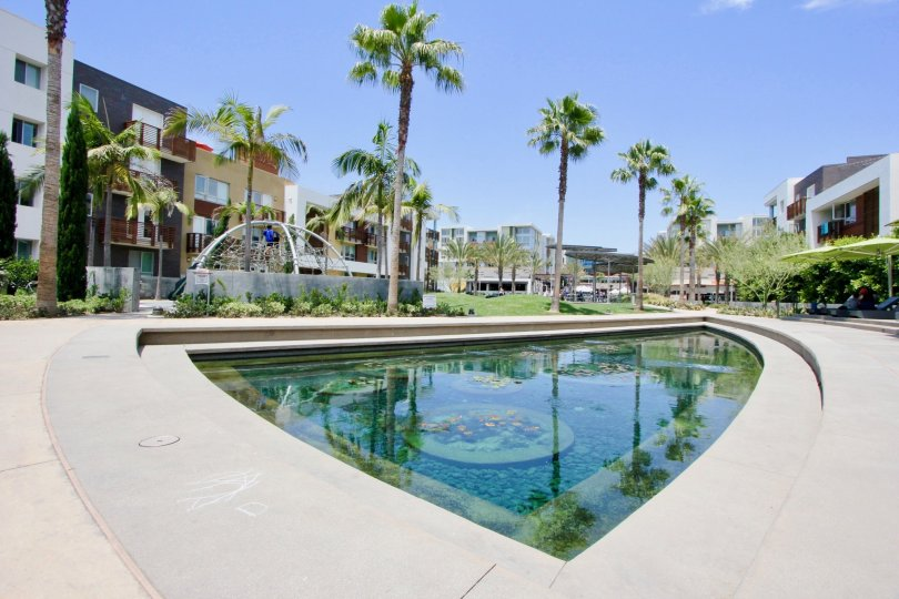 Cool relaxation and sight seeing facility for the residents of Cleo, Playa Vista California