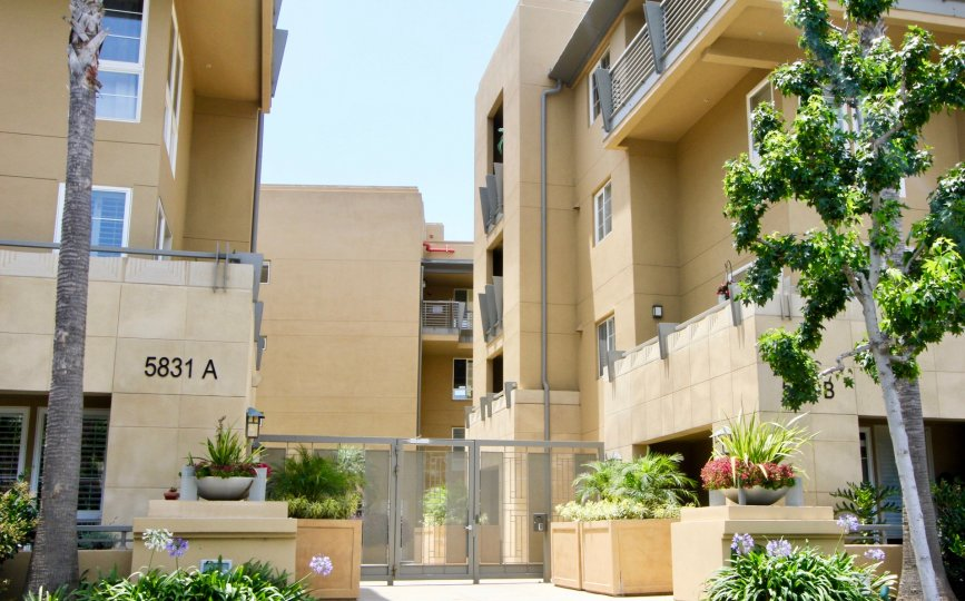 Number 5831 A building of Paraiso in playa vista with beautiful flowers.