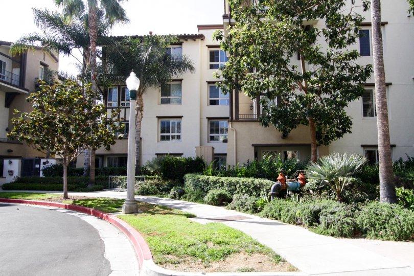 The sidewalk by the Serenade in Playa Vista