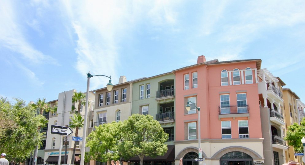 The Lofts, playa viata, California is A beautiful sky high well construct building which have elegant colour and shiny bright glass windows. Lots of green trees enhance its beauty. A sunny bright day give it an amazing look.