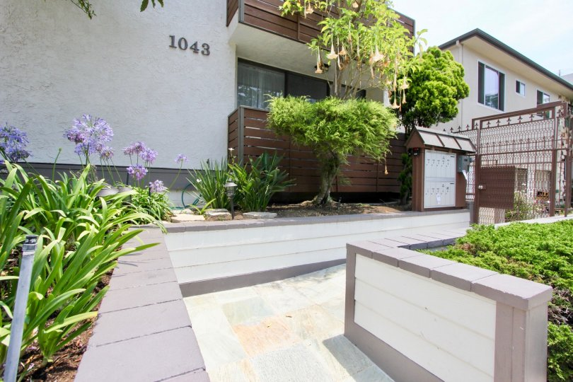 There are wonderful gardens at the 1043 12th St. community