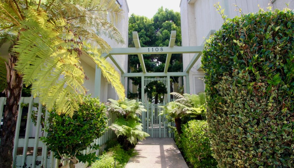 The entry to the building complex at 1108 18th st, Santa Monica California is beautifully constructed with trees planted all around.