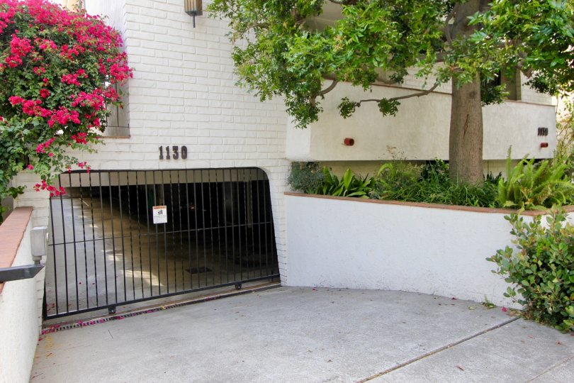 A gateway for a house parking in santa monica - california with trees covered to the underground parking