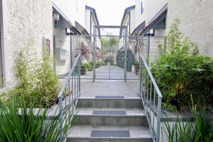 The steps to a beautiful gated community here in Santa monica.
