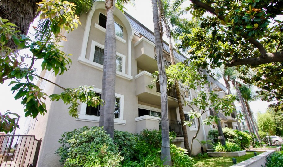 Big white building with many trees and plants in santa monica with style