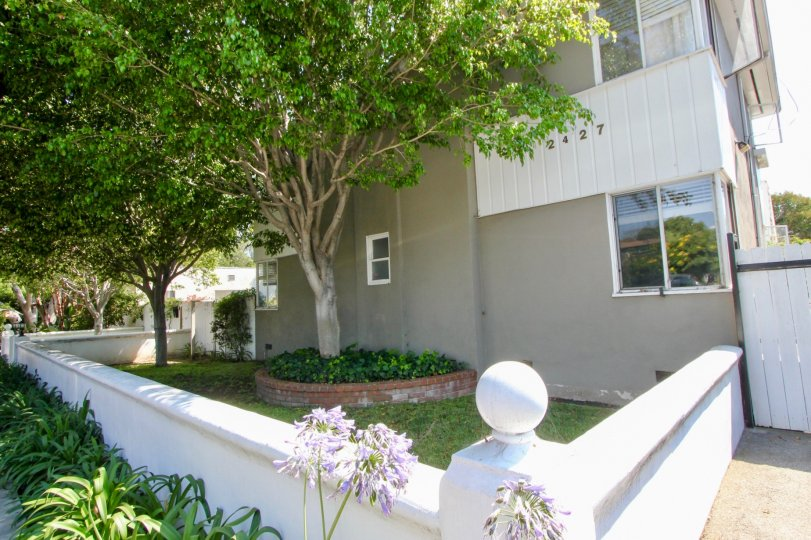 beautiful Backyward of 2427 Centinela, Santa Monica, California